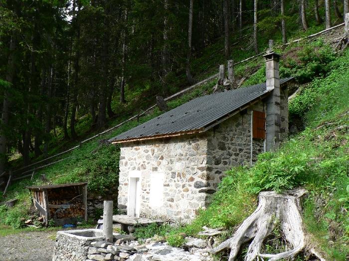 Restauration Cabane Des Villes A Courzieux Par Les Brigades Vertes